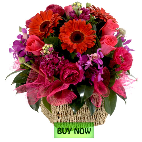 Order flowers online for delivery f 2017 for Buy plans online