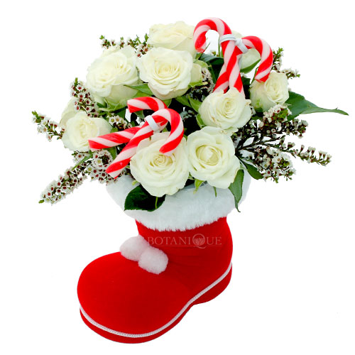 christmas-flowers-santa-shoe-with-candy-canes.jpg