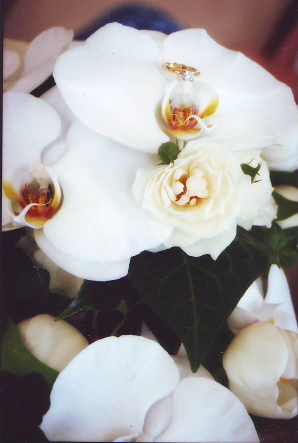 florist gold coast botanique flowers wedding thank you phalaenopsis orchids spray roses. Black Bedroom Furniture Sets. Home Design Ideas