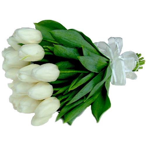 white-tulip-arm-sheath-bridal-bouquet.jpg